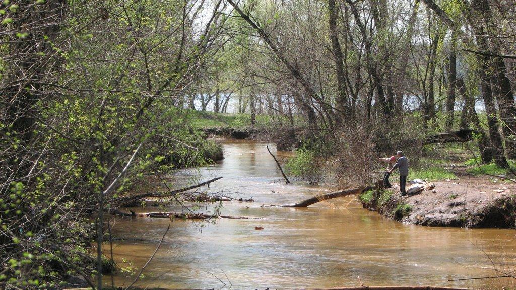 В Запорожье в реке нашли тело мужчины