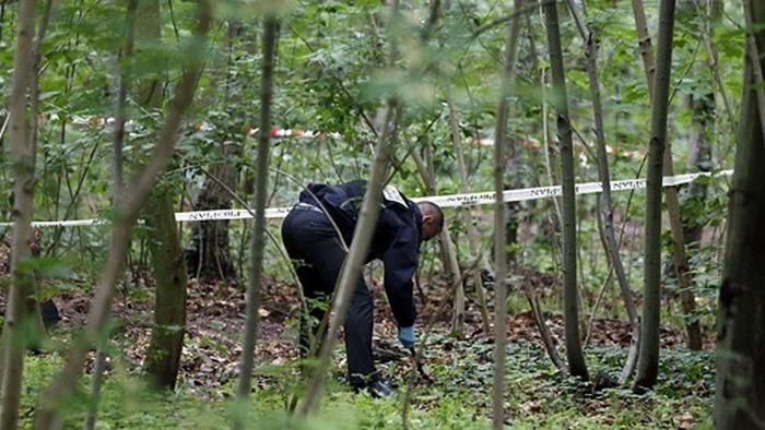 Страшная находка: в Запорожье в лесополосе обнаружили труп мужчины