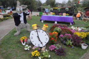 Какие цветочные инстaлляции готовят ко Дню города в Запорожье - ФОТО