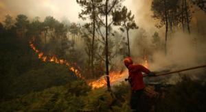 Вследствие масштабных пожаров в Португалии и Испании погибли  более 30 человек
