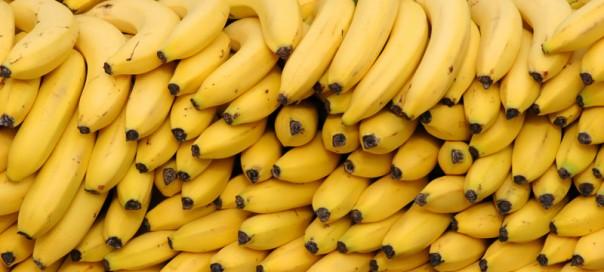 На выезде из Запорожья полицейские задержали грузовик с бананами