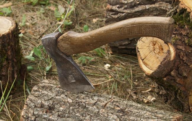 В Запорожской области мужчина убил топором односельчанина - ФОТО