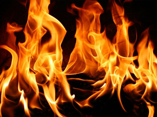 В Запорожской области огонь унес жизни двух человек