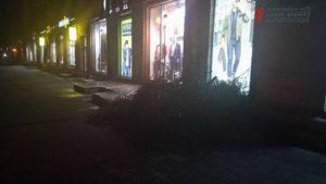 В Запорожье коммунальщики больше недели не могут вывезти спиленные ветки с центрального проспекта – ФОТО