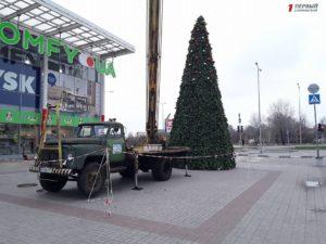 В Запорожье установили первую новогоднюю елку - ФОТО