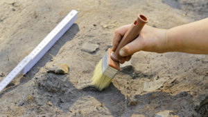 В Запорожской области археологи обнаружили уникальную находку - ФОТО