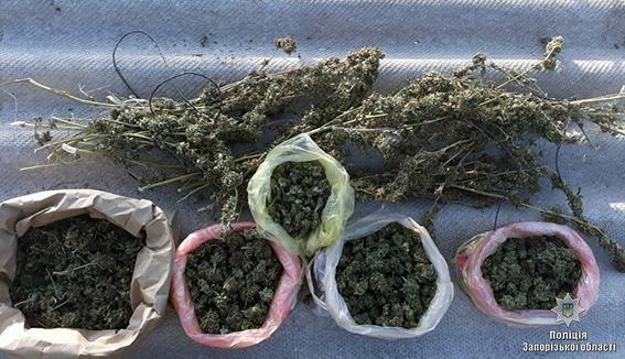 Житель Запорожья хранил дома наркотиков на 200 тысяч гривен и боеприпасы - ФОТО