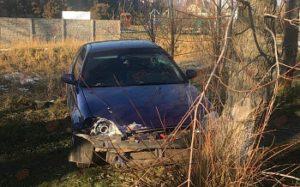В Запорожской области легковой автомобиль врезался в дерево: есть пострадавший - ФОТО