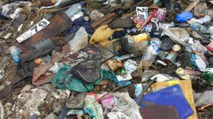 В заповедной зоне на острове Хортица неизвестные оставили огромную свалку мусора - ФОТО