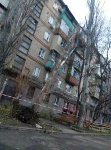В центре Запорожья аварийное дерево свалилось на пятиэтажку - ФОТО, ВИДЕО