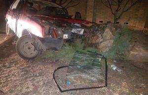 На запорожском курорте автомобиль слетел с дороги: есть пострадавшие - ФОТО, ВИДЕО