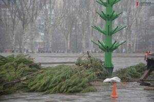 Как в Запорожье к новогодним праздникам готовят главную елку - ФОТО, ВИДЕО