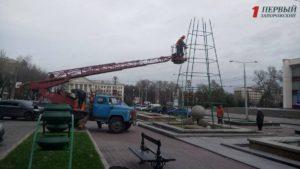 В центре Запорожья устанавливают городскую новогоднюю елку - ФОТО
