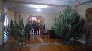 В мэрии Запорожья устанавливают новогодние елки - ФОТО