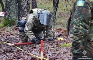 Запорожские взрывотехники за месяц уничтожили около 700 боеприпасов