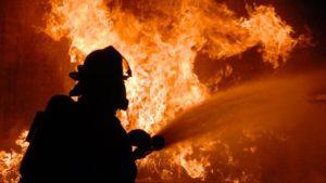 В Запорожской области горела хозяйственная постройка - ФОТО