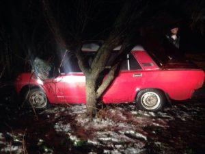 В Запорожье пьяный водитель пытался скрыться от патрульных, но в спешке врезался в дерево - ФОТО