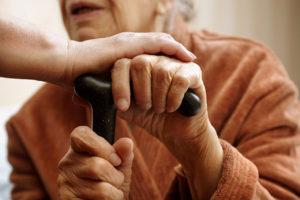 В Запорожской области ограбили и убили одинокую старушку: злоумышленника задержали - ФОТО