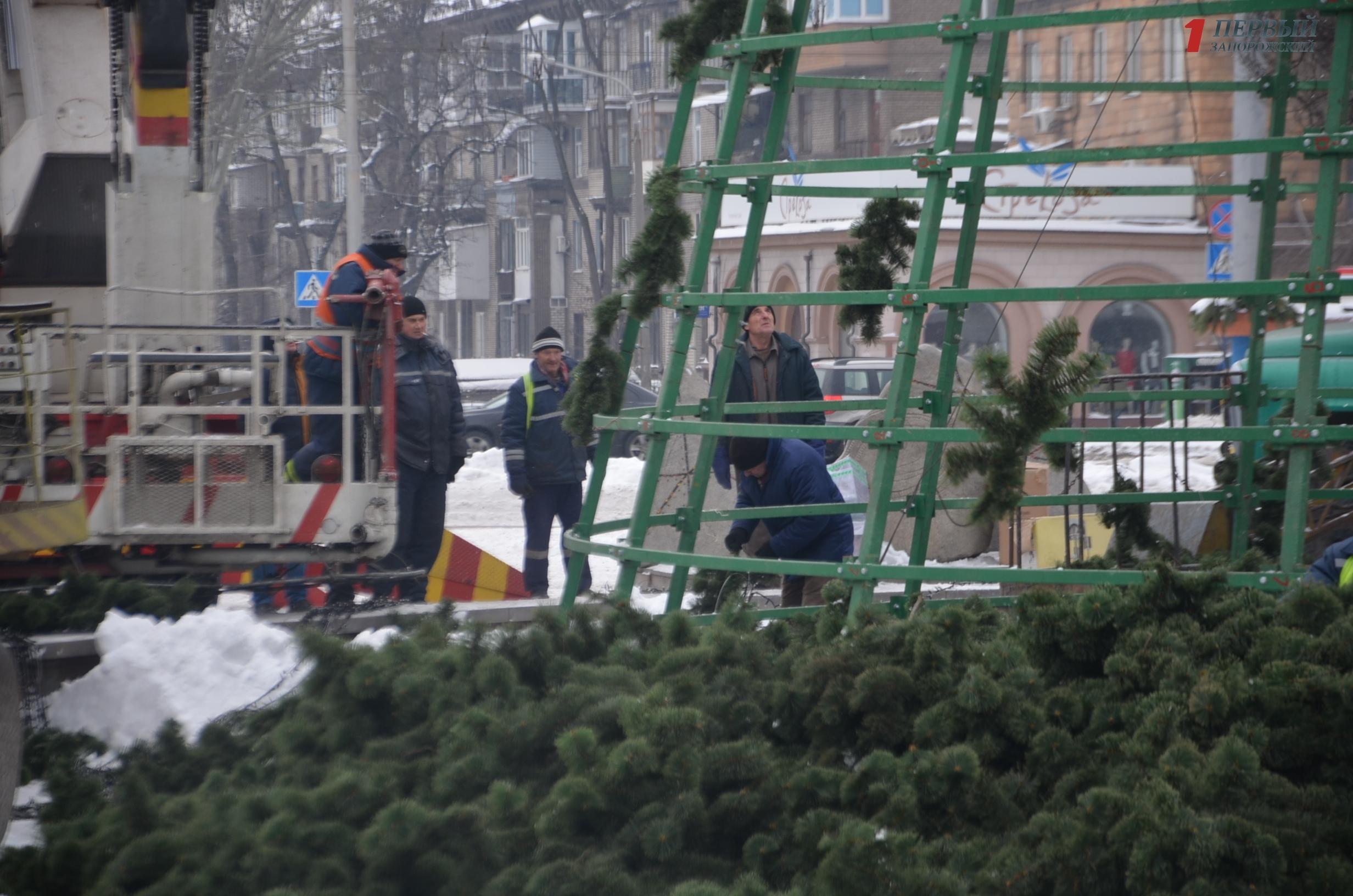 В Запорожье демонтируют последнюю городскую елку - ФОТО
