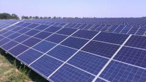 Корейская компания хочет построить в Запорожской области солнечную электростанцию