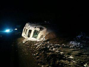 Под Запорожьем перевернулся грузовик с семечкой: водитель в больнице - ФОТО