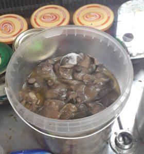 В одном из магазинов Запорожья продают маринованные грибы с плесенью – ФОТО