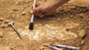 Археологи обнаружили 6000-летнюю могилу матери и ребенка - ФОТО