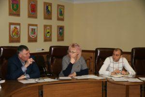 Депутат Запорожского областного совета задекларировала 14 земельных участков и 3 миллиона гривен дохода своей семьи