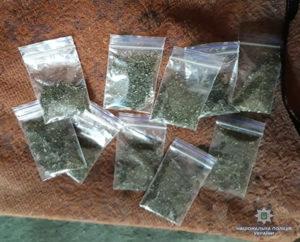 В Запорожской области правоохранители изъяли наркотиков на 60 тысяч гривен - ФОТО