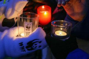 Запорожцев приглашают присоединиться к акции «Час Земли»