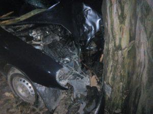 В Запорожье автомобиль такси влетел в дерево: есть пострадавший - ФОТО