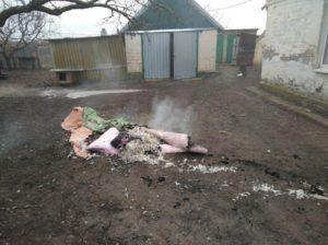 В Запорожской области горел жилой дом: погиб мужчина - ФОТО