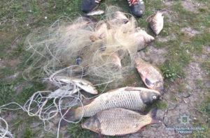 В Запорожской области задержали очередных браконьеров - ФОТО