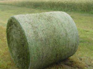 Сетка AgriPress – лучший выбор для тюкования от поставщика сельскохозяйственного оборудования АГ-БАГ-Украина