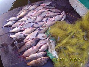 На Каховском водохранилище задержали браконьера с солидным уловом - ФОТО