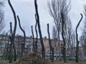 В центре Запорожья активисты принялись блокировать вырубку деревьев в парке Яланского: Кальцев пытается отстоять торговый центр