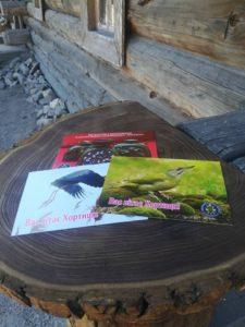 В Запорожье на острове Хортица работает уникальная служба доставки писем и открыток - ФОТО