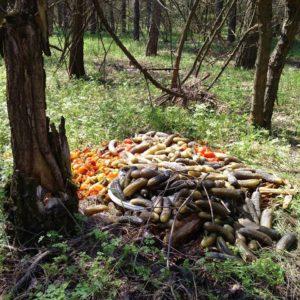 В Запорожье в заповедной зоне Великого Луга обнаружили «кладбище» консервации – ФОТО