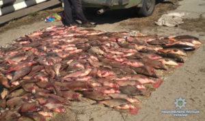 В Запорожской области задержали браконьеров с полным багажником рыбы - ФОТО