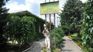 Запорожцев приглашают поучаствовать в высадке редких пород деревьев в детском ботаническом саду