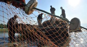 Запорожская область вошла в топ-5 регионов, которые получили наибольшие убытки от рыбных браконьеров