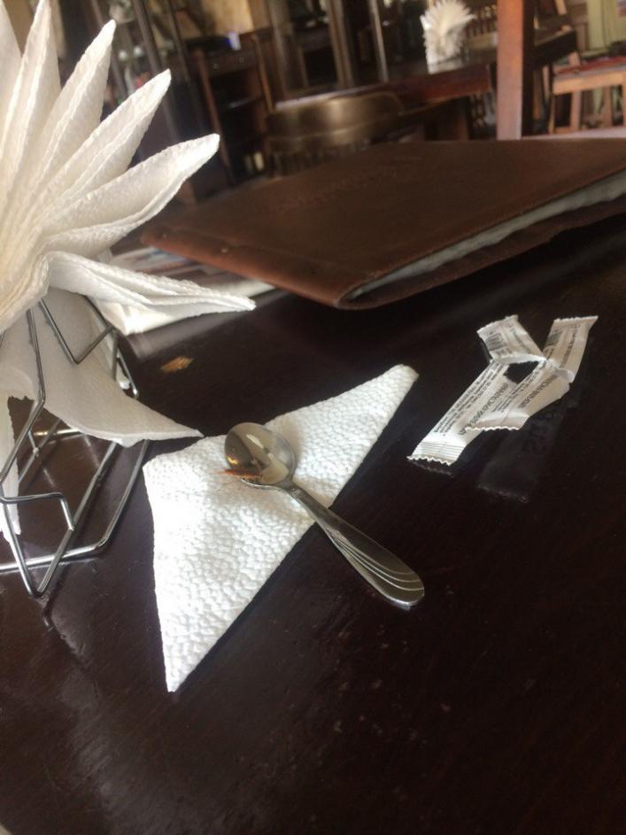В Запорожской области в популярном кафе обнаружили таракана - ФОТО