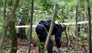 Житель Запорожской области жестоко убил свою любовницу с помощью отвертки