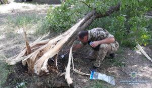 В Запорожской области в парке прогремел взрыв - ФОТО