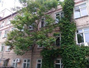 На запорожском курорте воры залезли в здание поликлиники