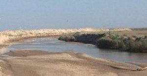 На Молочном лимане в Запорожской области снова назревает экокатастрофа - ФОТО