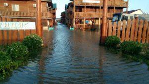 Улицы и базы отдыха под водой: в Запорожской области затопило популярный курорт - ФОТО, ВИДЕО