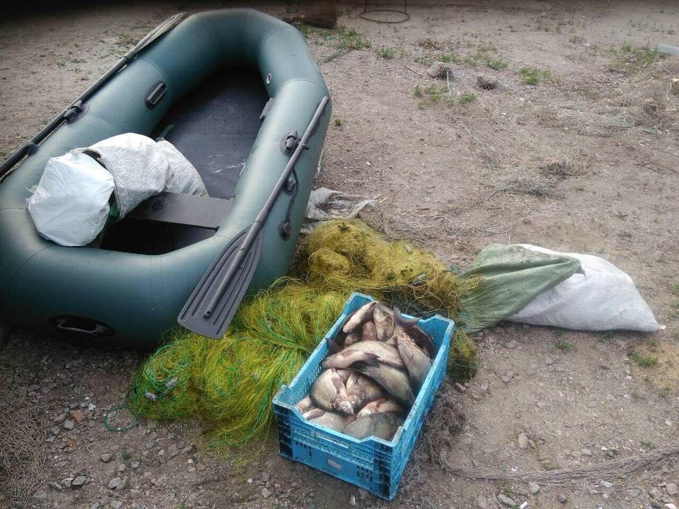В Запорожской области браконьеры наловили рыбы на 50 тысяч гривен - ФОТО