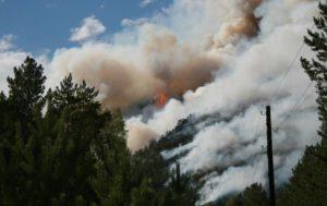 Засуха, пожары, выбросы, пыль дорог и безлесье: что не дает свободно дышать запорожцам