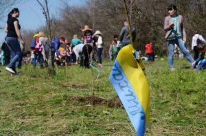Жителей Запорожья приглашают присоединиться к экологической акции на острове Хортица - ФОТО